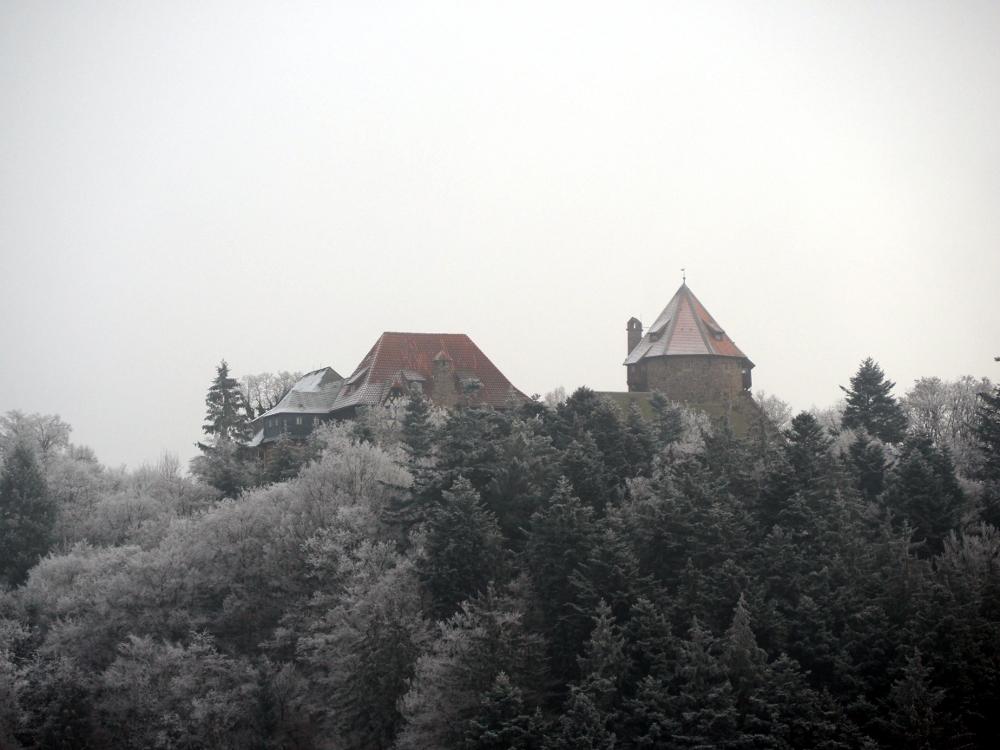 Burcht Lichtenfels in winter